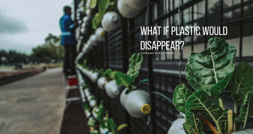Afbeelding: What if plastic would disapear